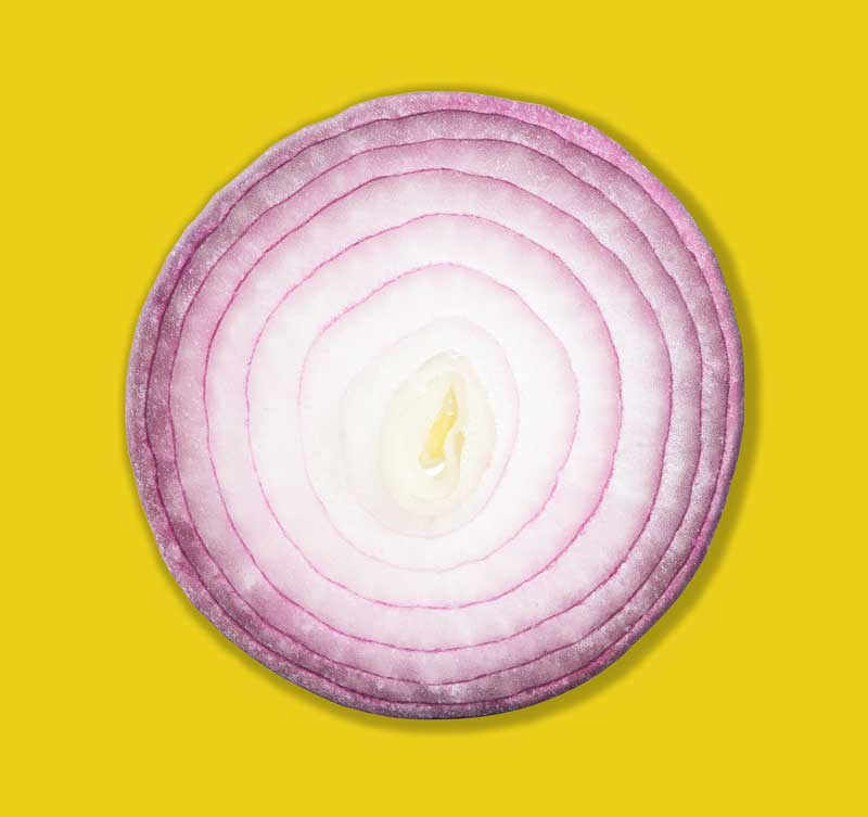 Onion layers representing SEO